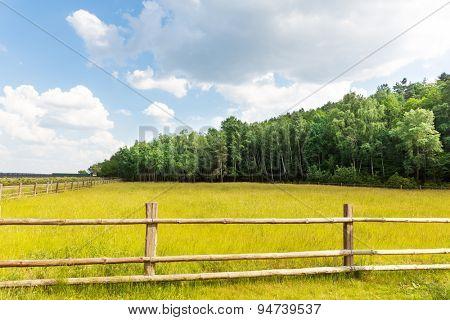 Rural nature