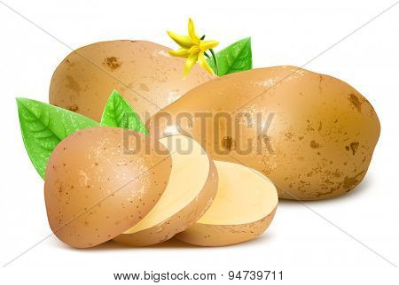 Potatoes with slices, leaves and blossom. Vector illustration