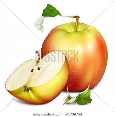 Whole apple and half cut apple. Vector illustration