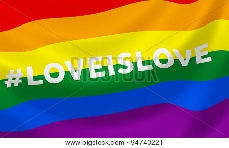 Gay rainbow equality flag with hashtag #loveislove