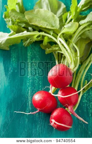 fresh radish with leaves over green background