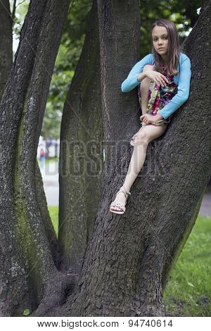 Little cute girl sitting on the branches of the tree.
