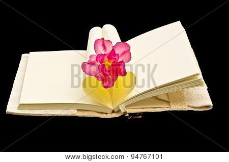 Heart Shaped Book With Flower Isolated On Black Background.