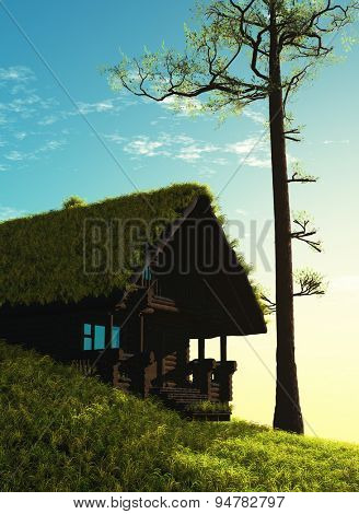Old wooden house under the grass in the forest.