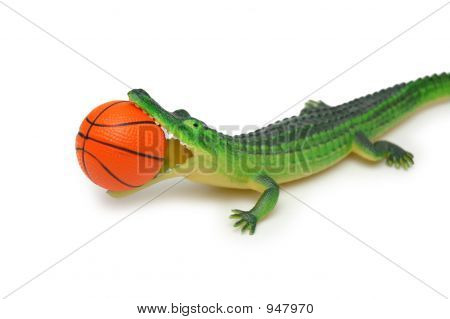 Crocodile With Basketball Isolated On White Background