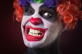 image of wig  - crazy clown in a wig - JPG