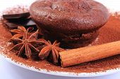 picture of chocolate muffin  - Homemade delicious fresh baked chocolate muffins with cocoa star anise pieces of chocolate and stick of cinnamon on white plate concept for dessert - JPG