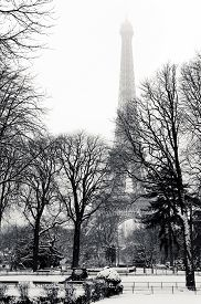 picture of paysage  - Eiffel tower in Paris from a garden under the snow - JPG