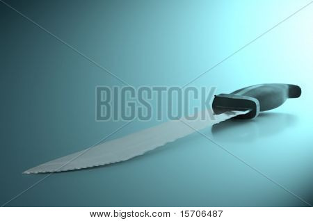 Stainless Steel Kitchen Knife