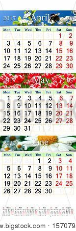 office calendar for three months April May and June 2017 with images of nature. Wall calendar for second quarter of 2017