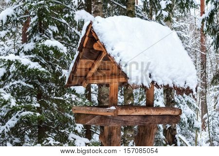 The image of the feeders for the birds in a wooden house with a roof covered with snow in a pine forest.