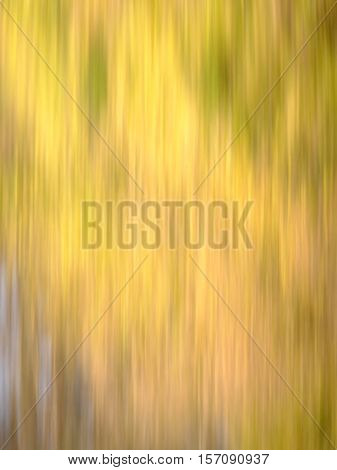 Blur of natural leaf colors in the Fall with mostly yellow and a bit of brown red and green. Suitable for background or abstract.