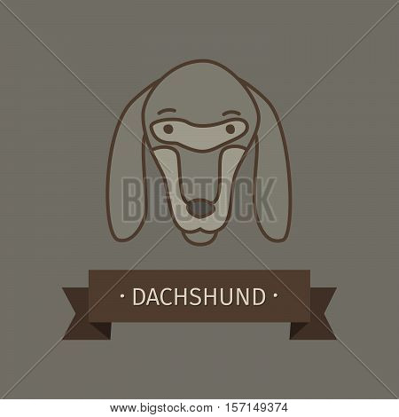 Dachshund breed dog for logo design. Vector colored hand drawn dog head