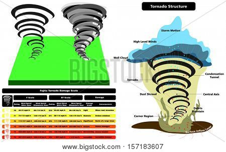 Vector Tornado Structure Infographic cross section with parts natural disaster damage scale wind speed grade consequences cloud wall storm motion level dust shroud condensation tunnel surface layer