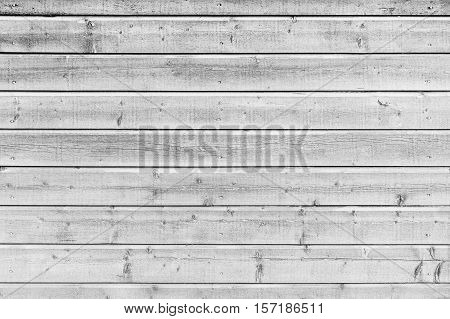 White Wooden Wall, Close-up Texture