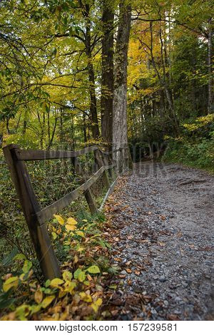 Old Railing Next To Trail
