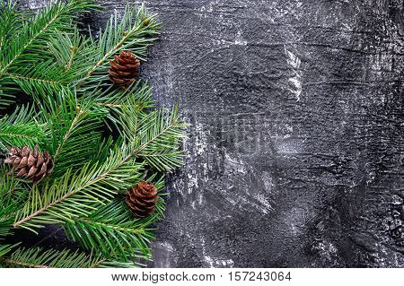 Fir tree branches and pinecones on dark slate backdrop