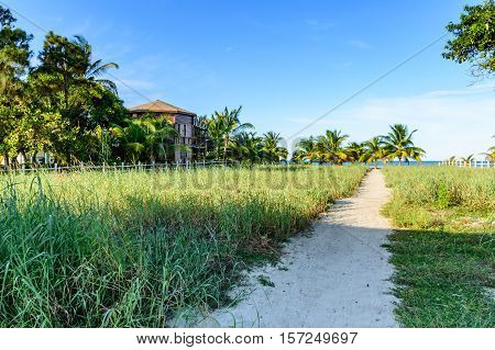Path leads to Caribbean beach by beachside house in Belize, Central America