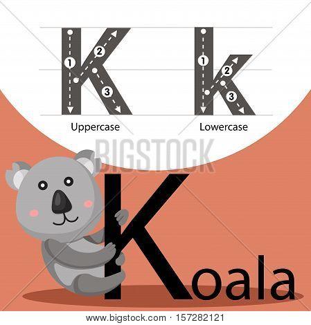 Illustrator of koala with k font for education