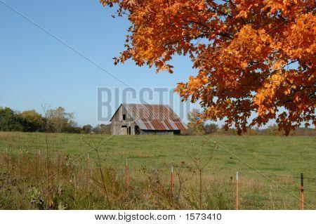 Barn Framed In Orange