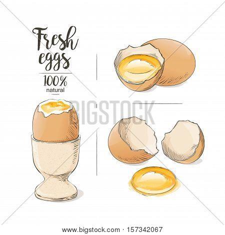 vector Boiled Egg as food Egg a cracked egg with an egg shell, egg yolk and egg white.
