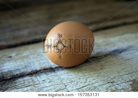 broken egg shell with compass sign concept idea for business direction.