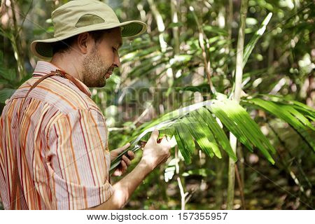 Ecology And Environmental Conservation. Ecologist In Panama Hat Examining Leaves Of Green Plant, Sea