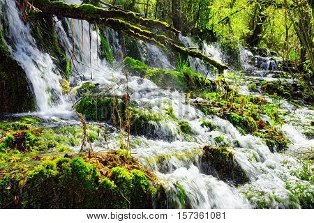 Beautiful Waterfall With Crystal Clear Water Among Green Woods