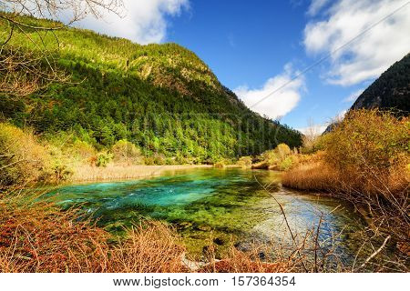 River With Azure Crystal Clear Water Among Wooded Mountains