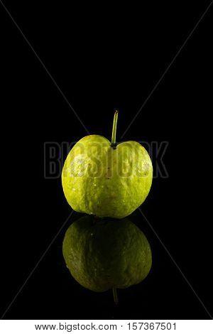 Guava On Black Acrylic
