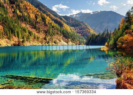 Amazing View Of The Arrow Bamboo Lake Among Autumn Woods