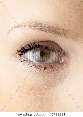 close-up of human eye. fresh look. beautiful eye in macro with flash refelction