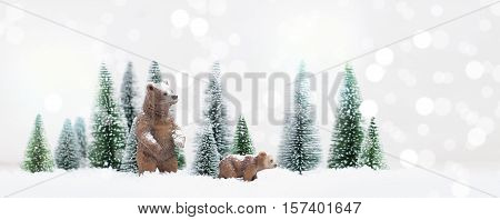 Christmas Polar And Grizzly Bears In Snowy Winter Forest - Christmas Card