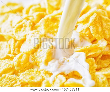 Milk pouring into yellow corn flakes. Breakfast concept.