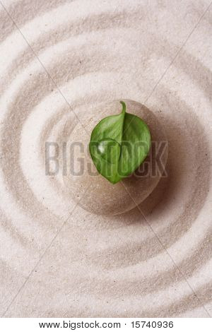 zen garden. Macro of a stone with a green leaf on raked sand