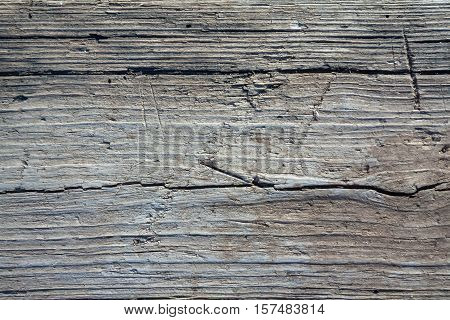 Obsolete wood background in white and blue tint as gray wooden texture