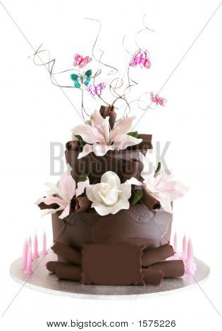 Fancy Chocolate Celebration Cake