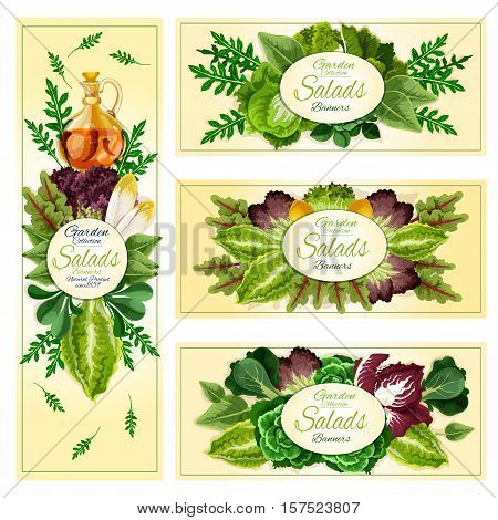 Salad leaf and vegetable greens banner of leafy frames with lettuce, spinach and chinese cabbage, arugula and iceberg lettuce, cress salad and bok choy, sorrel and chard, chicory, radicchio, batavia, corn salad