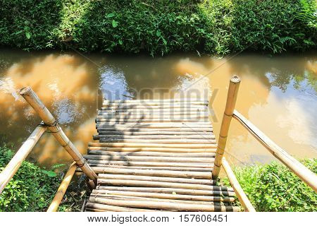 waterfront made from bamboo,  bamboo waterside on the river