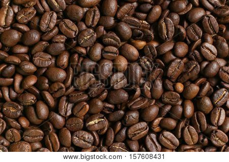 roasted coffee beans close-up in a horizontal plane