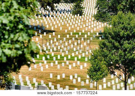 Tombstones on a grassy hill at Arlington National Cemetery near Washington D.C.