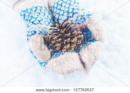 Female hands in knitted mittens with  wonderful pine cone on a w