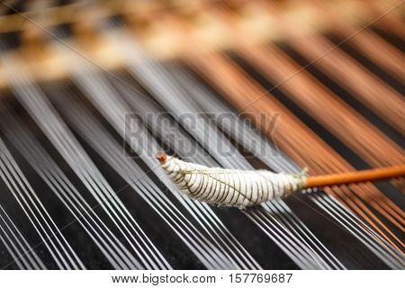 Dulcimer String And Wooden Bat