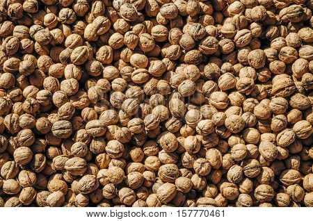 Crude walnut with nutshell. Walnuts in market lying in the sun and dries. Background of walnuts. Healthy walnuts. Fresh walnuts. Walnut pattern and texture scattered pile of walnuts.
