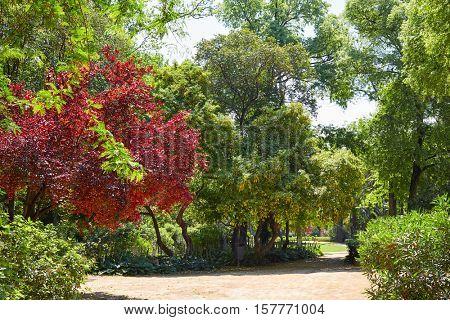 seville maria luisa park gardens in andalucia spain