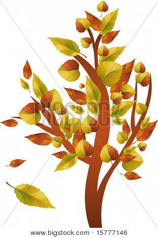 Autumn tree with color leafs -  for additional works of this kind, CLICK ON MY NICKNAME BELOW TO VISIT MY GALLERY