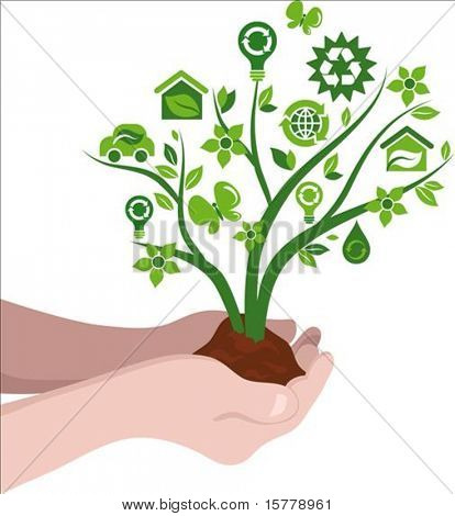 Small tree with ecological icons