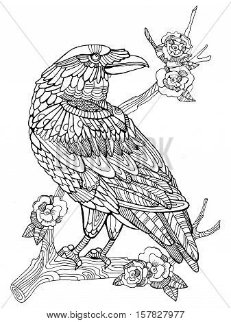 Crow Bird Coloring Book For Adults Vector Illustration Anti Stress Adult