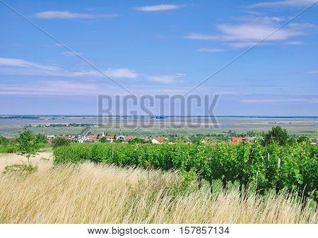 popular Wine Village of Moerbisch at Lake Neusiedl,Burgenland,Austria
