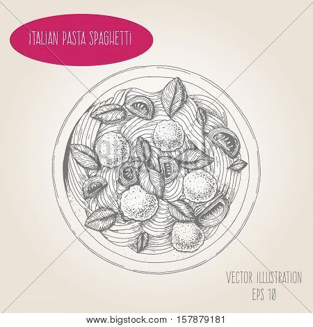 Spaghetti pasta and meatballs vector illustration. Italian cuisine. Linear graphic.
